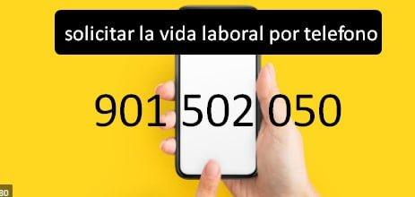 solicitar la vida laboral por telefono
